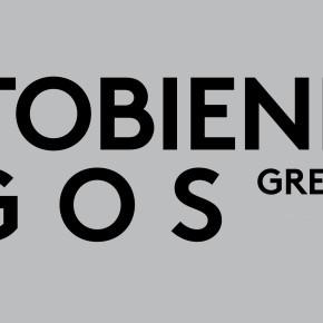 Views on the PhotoBiennale-Logos