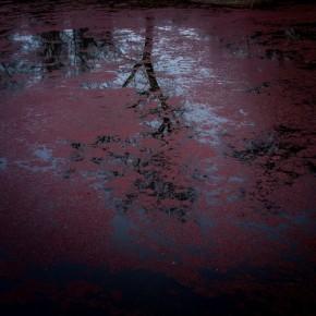 """Σεμινάριο """"In sight: Η Φωτογραφία ως συνειδητή πράξη"""" στο ΜΦΘ"""