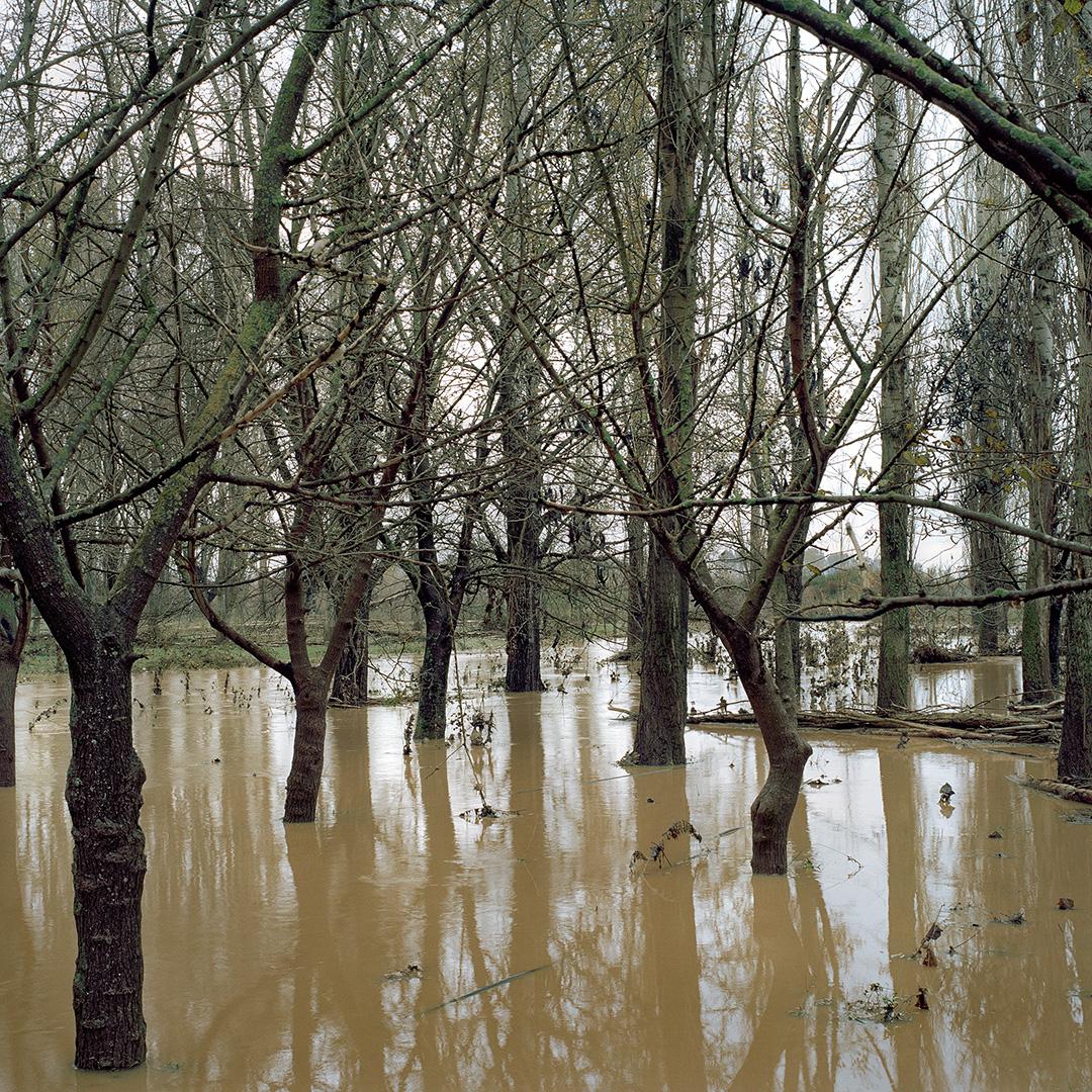 Yiannis Pantelidis, Gallikos river, 2015 | Nothing Personal